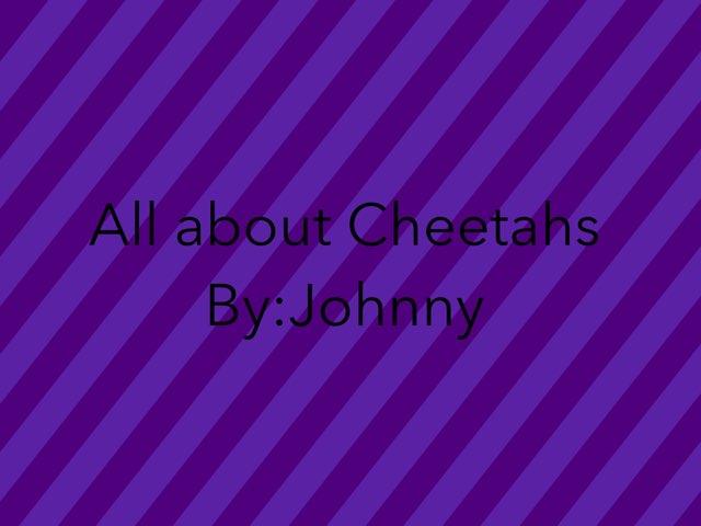 Johnny by Hulstrom 1st Grade