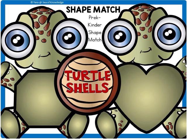 Shape Match - Turtle Shells by Yara Habanbou