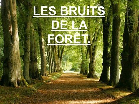 Les Bruits De La Forêt. by Valerie Escalpade