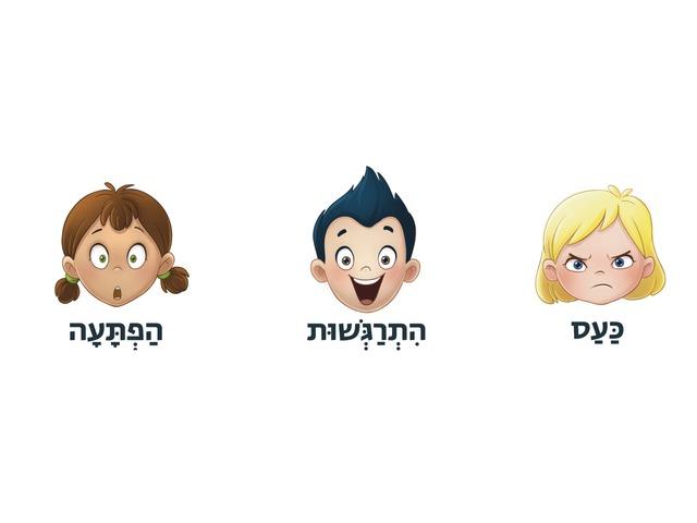 זיהוי רגשות by Rotem Shani