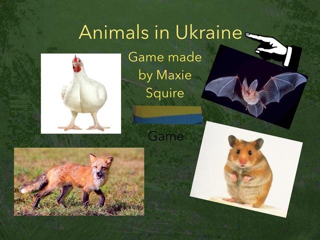 Animals In Ukraine Game by RGS Springfield