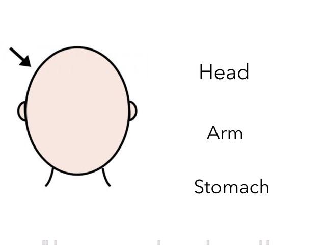 Parts Of The Body by Antonio Meleleo