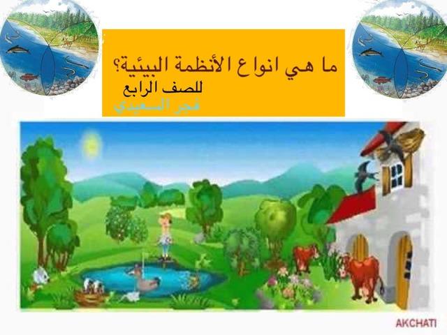 ما انواع الأنظمة البيئية by Fajer Alsaeedi