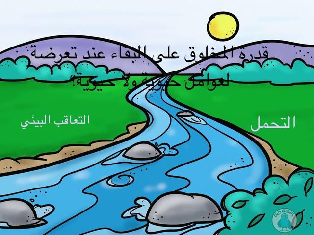 المجتمعات و المناطق الحيوية.  by shorog