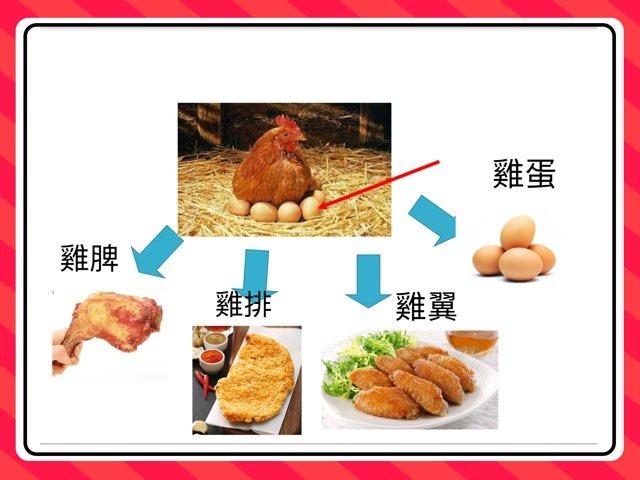 家禽的功用 by Li Kayan