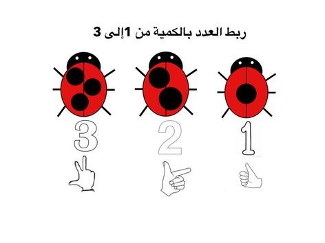 ربط العدد بالكمية  by Farida Beddar