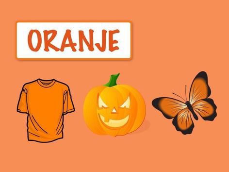 Kleuren: Oranje by Carol Smith