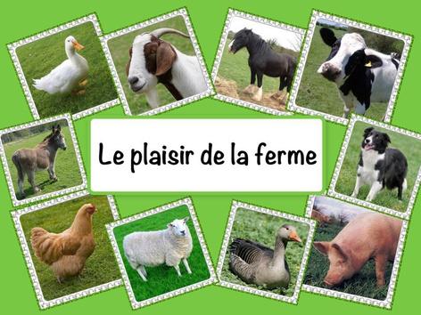 Le plaisir de la ferme by Catherine Davies