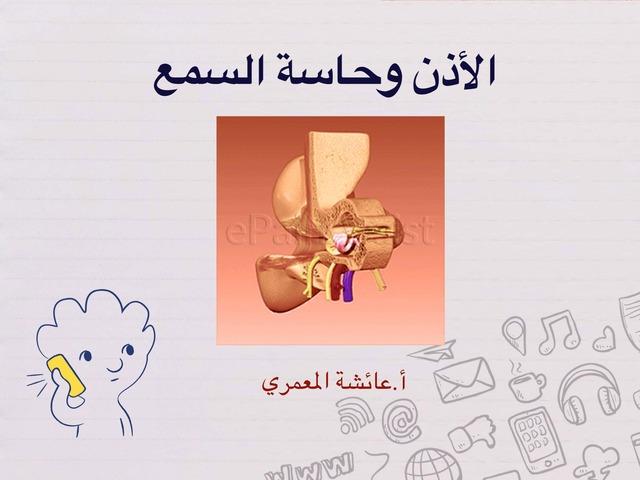 تركيب الأذن وحاسة السمع by aisha90 91