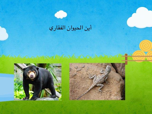 الحيونات٣ by omabdullah alenazi