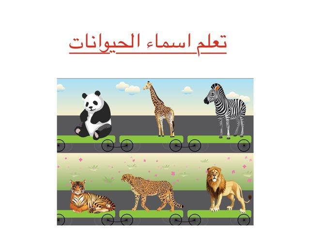 Animals Names  by Srihan0544923009 Wafa0544923009