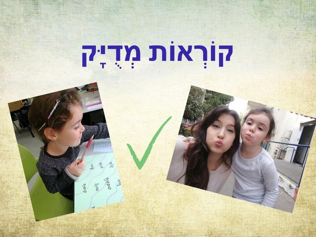 קוראות מדויק by Yuval Joseph