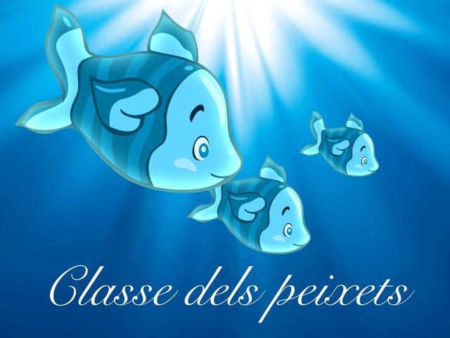 Classe dels Peixets by Marc Begué