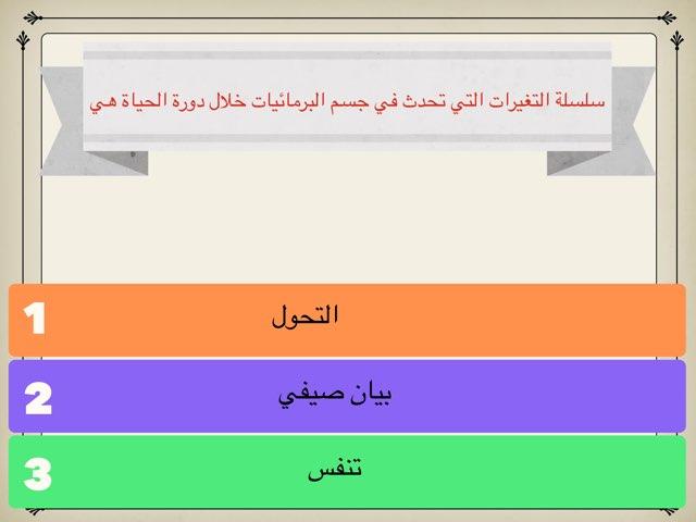 لعبة 46 by Hanan Almutairi