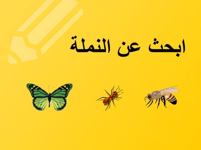 النملة by Abla amoon