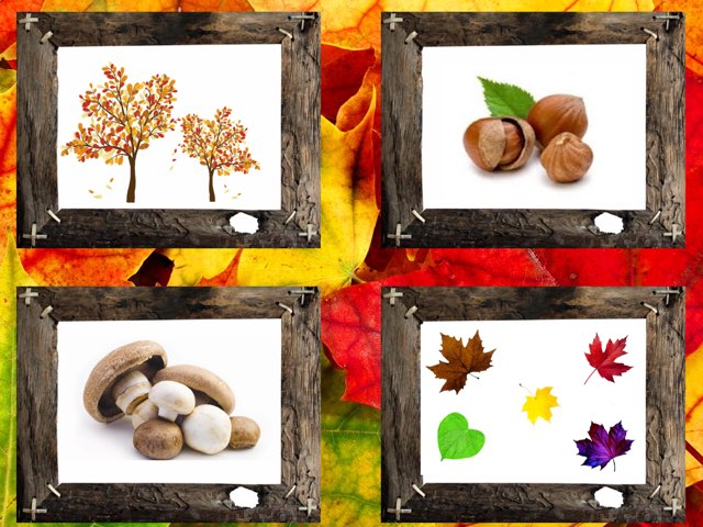 Autumn - Counting & Plurals by Teeny Tiny TEFL