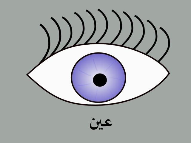 أنا وجسمي - العين by מייסר Micherqy