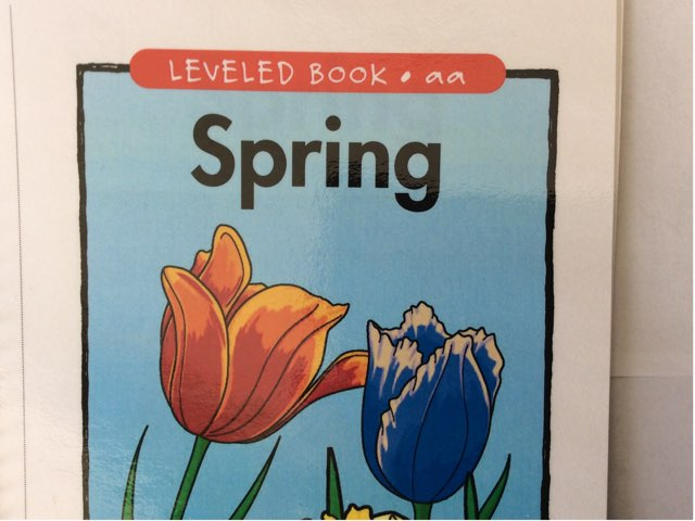 AA Leveled Book: Spring by Yvonne Malone