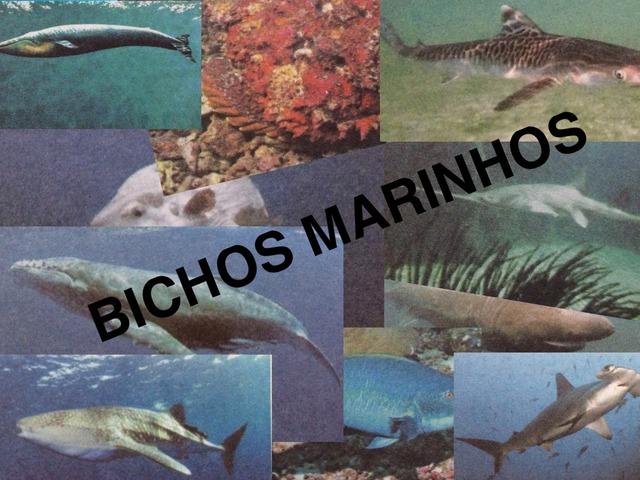 BICHOS MARINHOS by Thais Laes