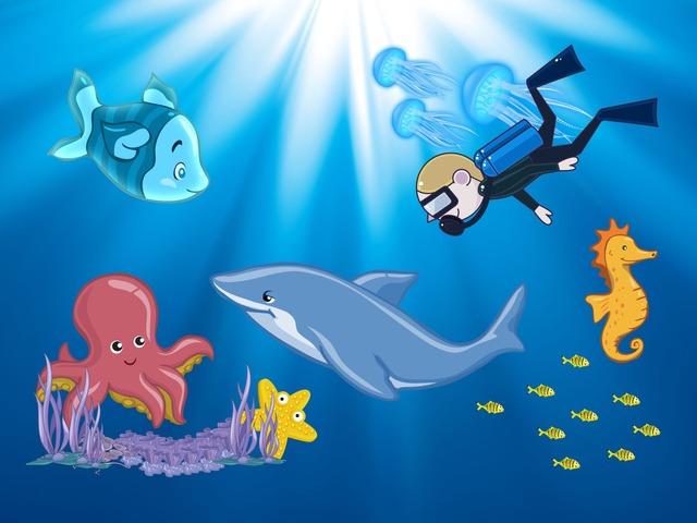 SEA ANIMALS by Samuel Lopez Alcantara