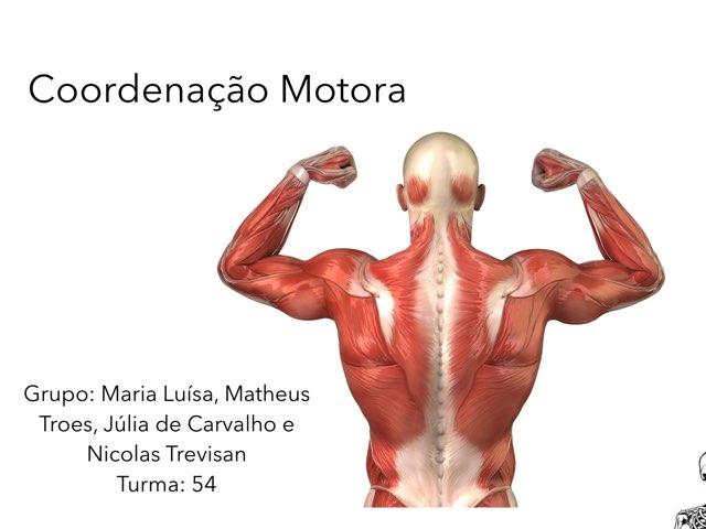 Coordenação Motora by Rede Caminho do Saber