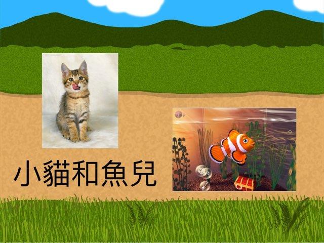 小貓和魚兒 by Chan M C