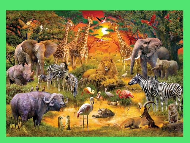 3 Пазла африканские Животные by Alex