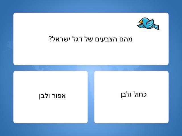 דגל ישראל by ziva dotan