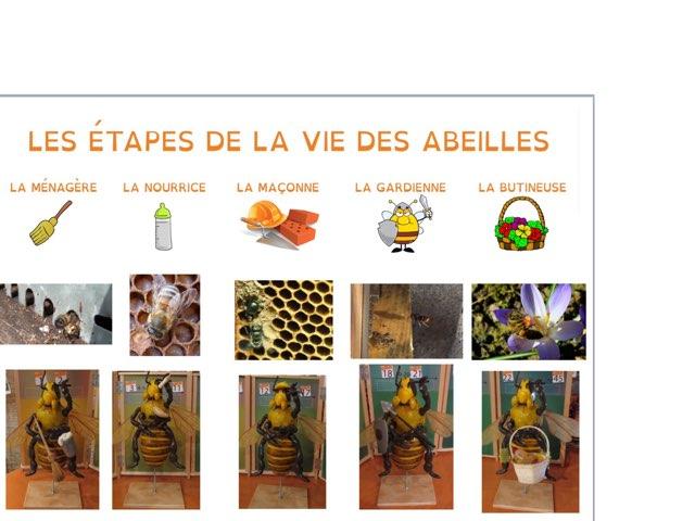 La Vie De L'abeille by Maya Labeille