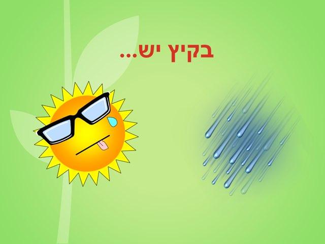 בקיץ יש... by אורה גלאי