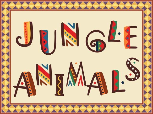 Jungle Animals 1 by Iratxe Errasti
