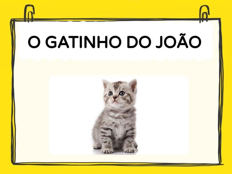AJUDANDO O JOÃO COM O SEU GATINHO by Tobrincando Ufrj