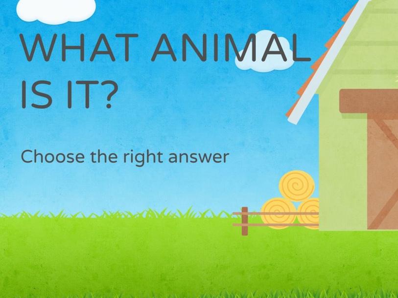 ANIMALS by Primaria Interattiva