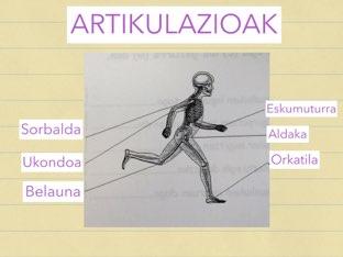ARTIKULAZIOAK by Endika Bedia