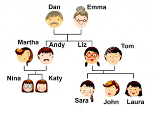 A family tree by Viktoriia Antonova