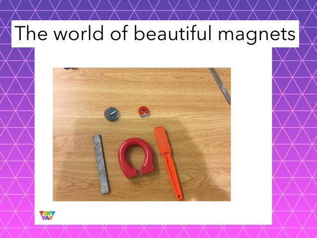 Abigail's Marvelous Magnets by Frances Chapin