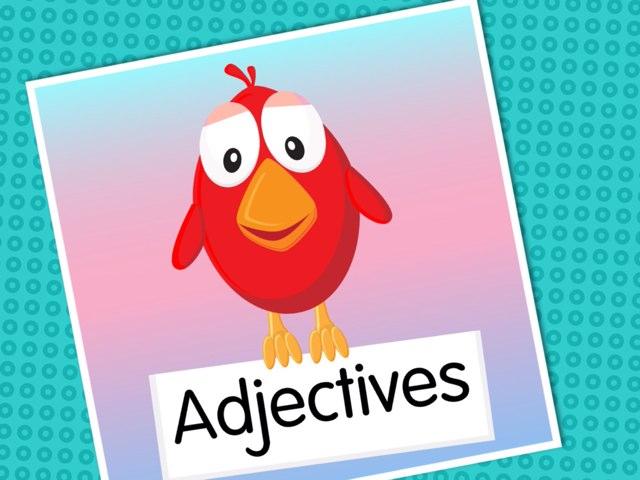 Adjectives by Kim Reghenzani