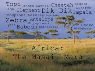 Africa: The Masaii Mara by Shannon Norquist