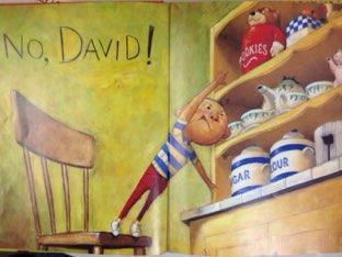 Ak - Close Reading No, David! by Lindsey Roberts-Walstrom