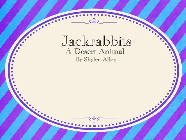 All About Jackrabbits  by Amy Clay