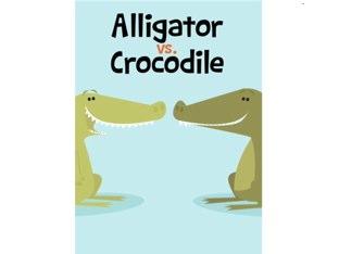 Alligator vs. Crocodile by Miss Humblebee