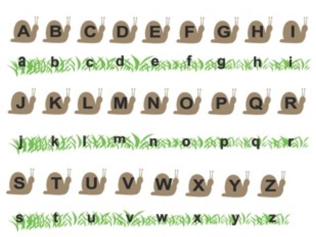 Alphabet Maj Script by Pawlik Caroline