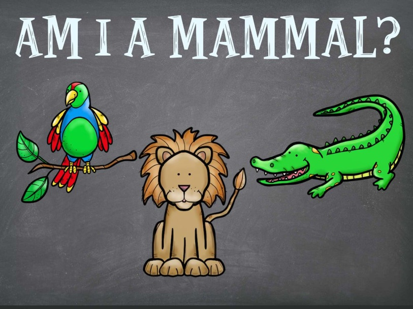 Am I a Mammal? by Raquel Reyes-Guerrero