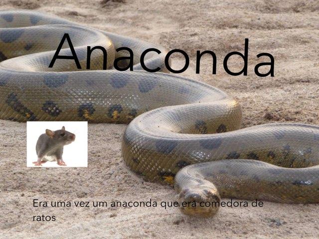 Anaconda by Lucas Bigolin Rauber