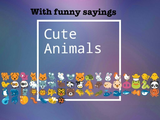 Cute Animals by Lacey waters