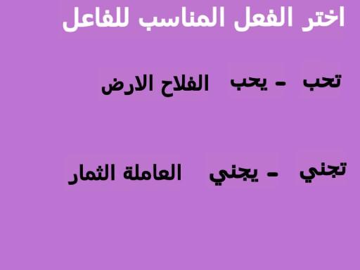 اللغة العربية by rasha ALKAMSH