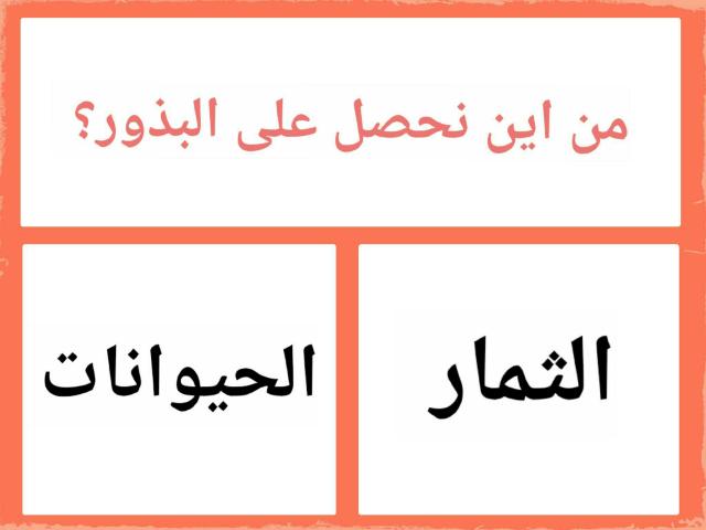 جنى الركف by Amal Amal