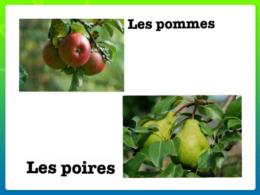 les fruits (test 02 17) by Monique Ducroux