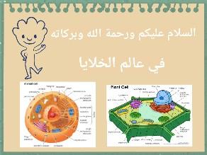 الخلايا by Alaa Ali