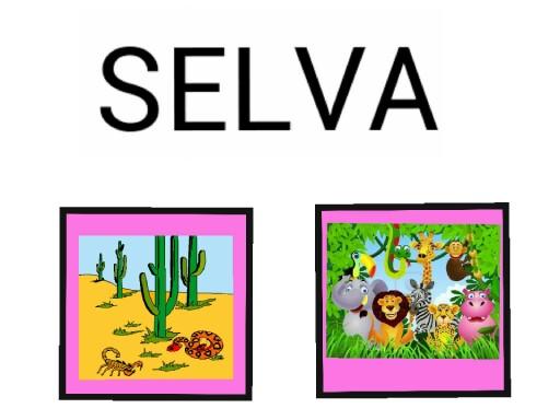 SELVA A.L by Africa Barba